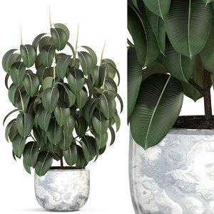 3D plants 290 model