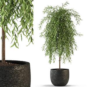 plants 292 3D
