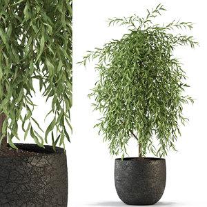 3D model plants 293