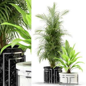 plants 295 3D model