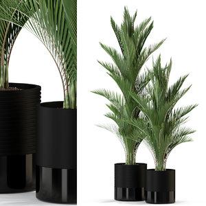 plants 296 3D model