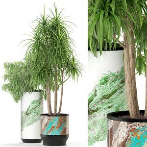 3D plants 301