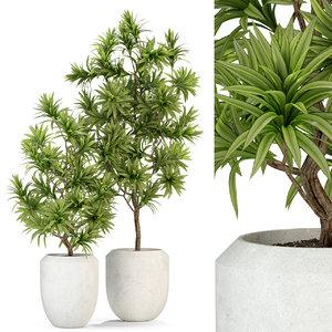 plants 303 model