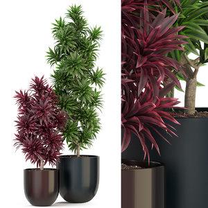 plants 305 3D model