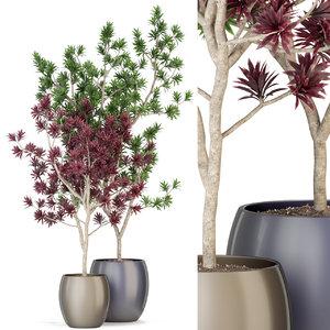 3D plants 307