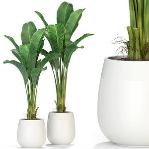 plants 310 3D model