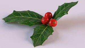 3D holly berries leaf plant
