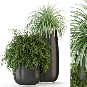 plants 319 3D model
