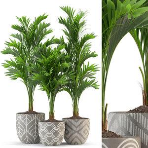 plants 321 3D