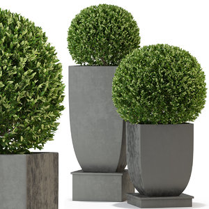plants 328 3D model