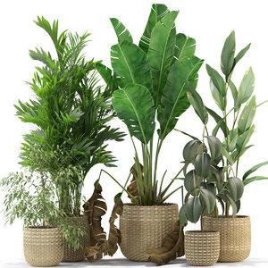 plants 330 3D