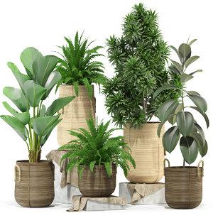 plants 332 3D model