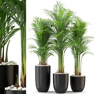 plants 333 3D model