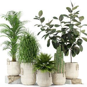 plants 334 3D