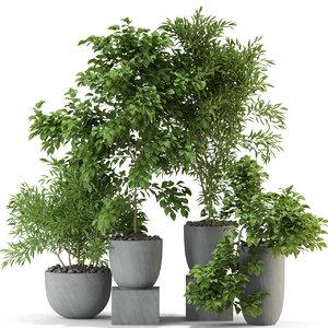plants 335 3D model