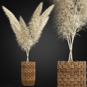 plants 337 3D model