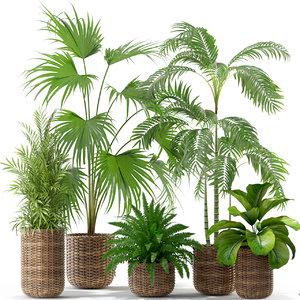 plants 338 3D model