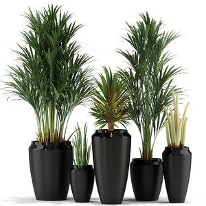 plants 339 model