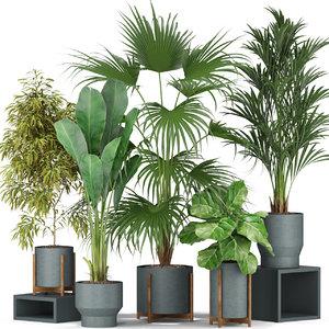 plants 344 model