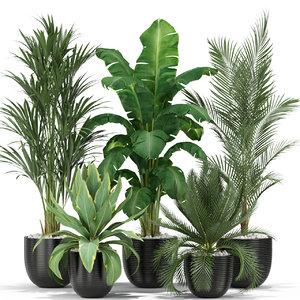 plants 349 model