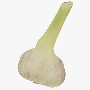 hardneck garlic 01 raw 3D