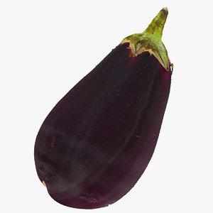 italian eggplant 01 raw 3D model