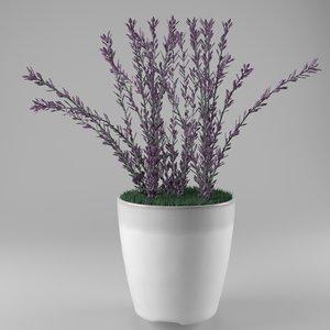 lavender decoration 3D