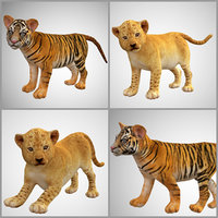 Baby lion tiger collection