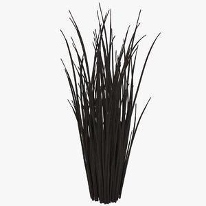 3D model black reed grass