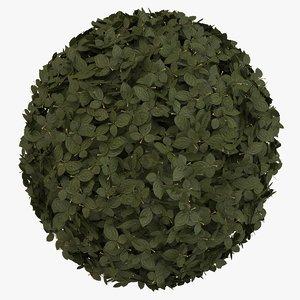 ball shrub topiary 3D model