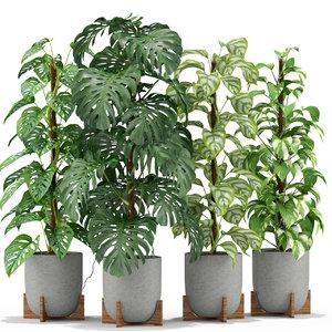 plants 355 3D