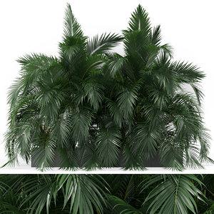 3D plants 358