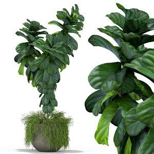 3D plants 359 model