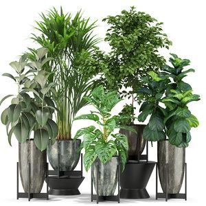 3D plants 360