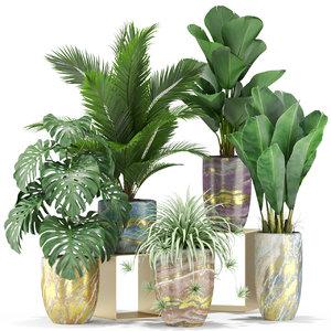 plants 361 3D model