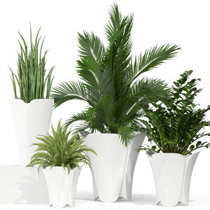 3D plants 362 model