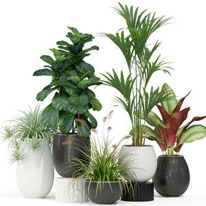 plants 363 3D model