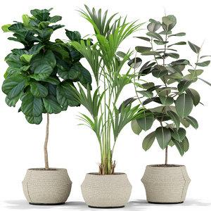 plants 364 3D model