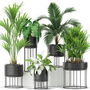 3D plants 365