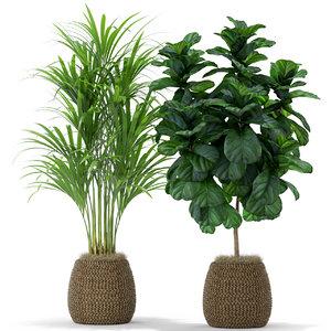 3D plants 369