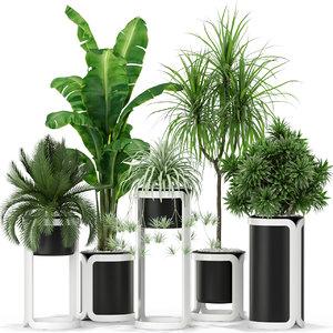 plants 372 3D