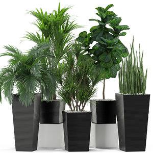 3D model plants 373