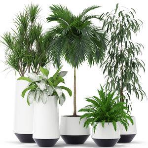 3D plants 374