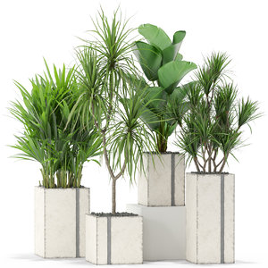 3D plants 375 model