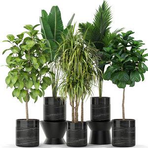 3D plants 379