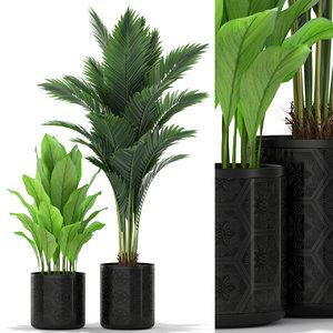 plants 380 3D model
