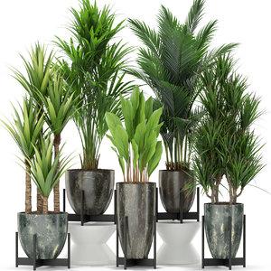 plants 381 3D