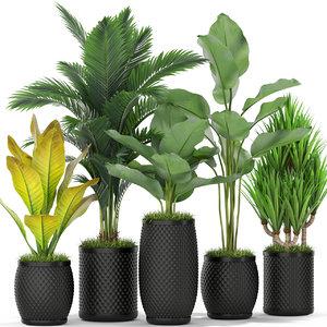 plants 384 model
