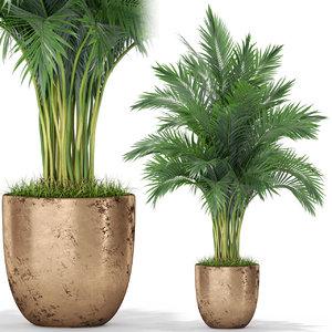 3D plants 385 model