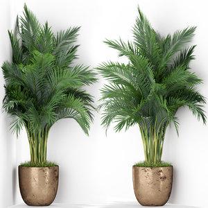 plants 386 3D model